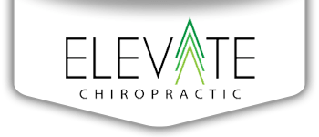 Chiropractic St Louis Park MN Elevate Chiropractic